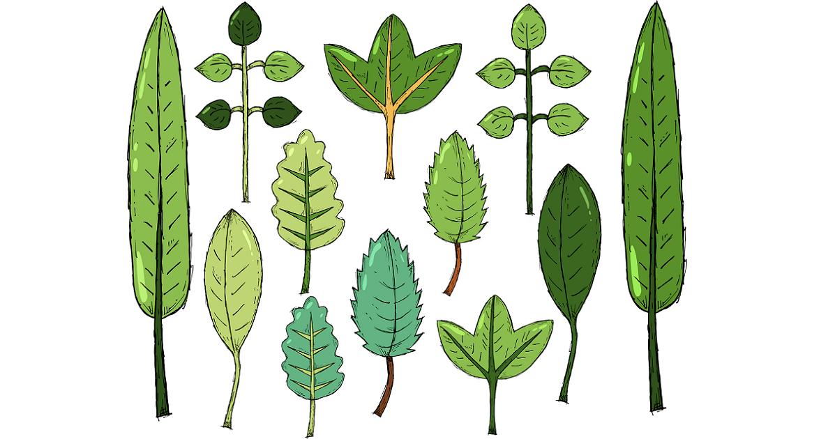 lavoretto foglie bambini